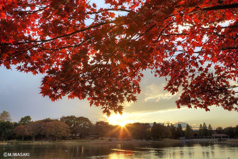 「秋」は何より「良い環境」が整う季節✨